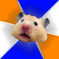 hamster Meme template