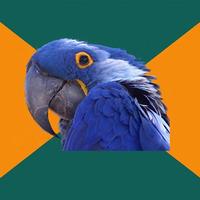 paranoid parrot Meme template