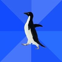 socially awkward penguin Meme template