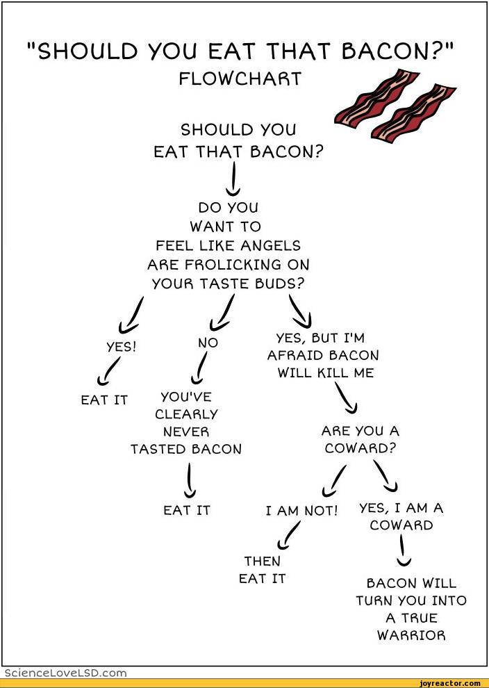 """SHOULD YOU EAT THAT BACON?"" FLOWCHART SHOULD YOU EAT THAT BACON? DO YOU WANT TO FEEL LIKE ANGELS ARE FROLICKING ON yOUR TASTE BUDS? yES, 5UT I'M AFRAID BACON WILL KILL ME CLEARLy NEVER TASTED BACON ARE yOU A COWARD? EAT IT I AM NOT! yES/ I AM A / COWARD THEN EAT IT BACON WILL TURN yOU"