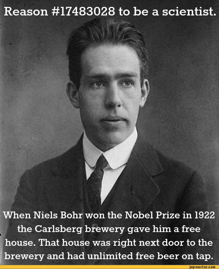 Reason #17483028 to be a scientist When Niels Bohr won the Nobel Prize in 1922 the Carlsberg brewery gave him a free house. That house was right next door to the brewery and had unlimited free beer on tap.,beer,alcohol,science,niels bohr