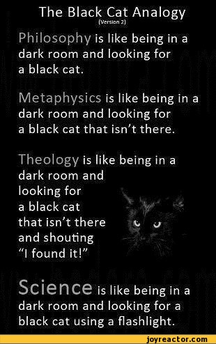 "The Black Cat Analogy {Versten 2} Philosophy is like being in a dark room and looking for a black cat. Metaphysics is like being in a dark room and looking for a black cat that isn't there. Theology is like being in a dark room and looking for a black cat that isn't there v, ^ and shouting ""I"