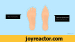 rWhat a foot looks likeWhat shoe manufacturers picture a foot looks liketruthfacts.com