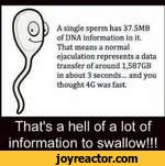 (A single sperm has 37.5MBof DNA information in itThat means a normalejaculation represents a datatransfer of around 1,587GBin about 3 seconds... and youthought 4G was fast.That's a hell of a lot of information to swallow!!!