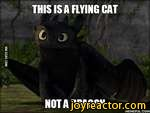 VIA96AG.COMTHIS IS A HYING CAT , iINOTA DRAGONHEMEFUL.COM