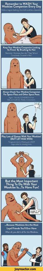 Remember to WASH Your Wookiee Companion Every DayWithout regular bathing, the smell would be unbearable!Keep Your Wookiee Companion Looking Its Finest By Brushing Its HairReminder: Wookiees Are Like 7 Feet Tall and Completely Covered in Hair!Always Check Your Wookiee Companion For Space-Fleas and