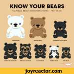 KNOW YOUR BEARSNational Bear Awareness Week - May 18-24Spectacled BearSloth BearPanda BearSun Bear