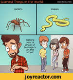Scariest Things in the WoSpidersWalking past a group of teenagers on the streetrid:Adam Ellis | BuzzFeedsnakes