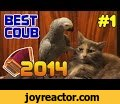 2014  #1 |  ,Comedy,, , 2016, ,best pranks, , ,  coub,,coub, ,  2015,best coub,, 2016 ,   , ,,funny videos,  2016,   2016,  2014,,,fail,joke,fails 2016,best fails,funny,best video,,, ,  2014,  () 2014  !  :http://coub.com/view/1qd8j - deal with ithttp://coub.com/view/1qc03 - Have a lucky day you