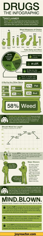 DRUGSTHE INFOGRAPHIC*DISCLAIMERAbout 16% of the people who took this survey claim they were high while taking it, so take everything you read below with a grain of the dankest salt possible.3%-AHollowApple0-7%ft NJ \ uWeed Weapons of ChoiceParaphenalia preference by percentage 19%Gravity Spliff
