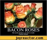 BACON ROSESShe wants romance, you want a snack. Problem Solved.