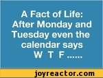 A Fact of Life: After Monday and Tuesday even the calendar says W T F......