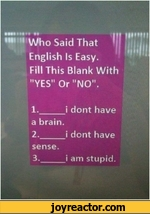 "muhm MU Who Said That English Is Easy.Fill This Blank With ""YES"" Or ""NO"".1._i dont havea brain.2._i dont havesense.3._i am stupid.illi!"