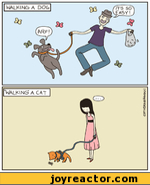 WALKING? A DOG