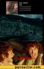 run, forrest, run! looool!