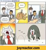 THE ADVENTURES OF BUSINESS CATTOM FONDER