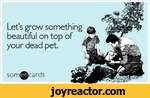 Lets grow something beautiful on top of your dead pet.son i^cards