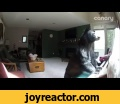 Bear Breaks Into Colorado Home, Plays Piano,Entertainment,storyful,news,viral,piano,bear,Colorado,Vail,break in,burglar,To use this video in a commercial player or broadcast, contact licensing@storyful.comCredit: Katie Hawley via Storyful