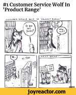 #1 Customer Service Wolf In 'Product Range'