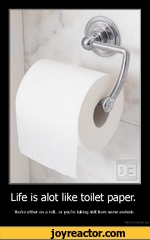 Life is alot like toilet paper.You're either on a roll., or youVe taking shit from some asshole.De motivation, us