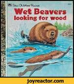 ^JoUA. CfoftjAoodWet Beaverslooking for wood