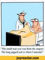 """""""The small neat scar was from the surgery. The long jagged scar is where I sneezed."""