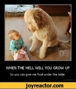 WHEN THE HELL WILL YOU GROW UPSo you can give me food under the tableDemotivation.us