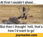 But then I thought hell, that's how I'd want to go'At first I couldn't shoot\ vITV*