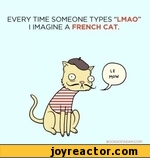 "every time someone types ""lmao"" i imagine a french cat"