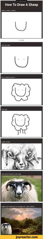 VIA FEEDINCO.COMHow To Draw A SheepDraw a wide U shapeAdd two dotsPut a cloud around itAdd legs