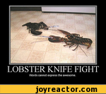 Lobster knife fight words cannot express the awesome