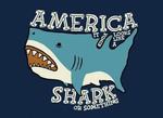 america it kinda looks like a shark or something
