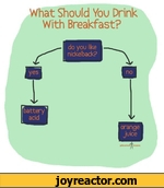 What Should You Drink With Breakfast? do you like nickelback?