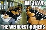we have the weirdest boners