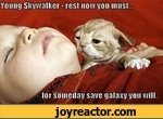 young skywalker rest now you must for someday save galaxy you will