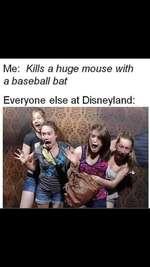 Me: Kills a huge mouse with a baseball batEveryone else at Disneyland: