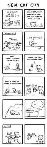 NEW CAT CITY