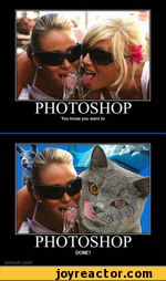 PHOTOSHOP You know you want to PHOTOSHOP DONE!