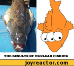 the results of nuclear fishing