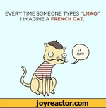 EVERY TIME SOMEONE TYPES LMAO I IMAGINE A FRENCH CAT.