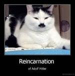 Reincarnationof Adolf Hitler