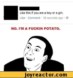 Like this if you are a boy or a girl.Like  Comment * 36 seconds ago NO. I'M A FUCKIN POTATO