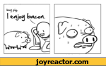 hey pig i enjoy bacon
