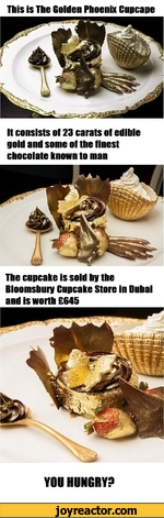 This is The Golden Phoenix CupcapeIt consists of 23 carats of edible gold and some of the finest chocolate known to manThe cupcake is sold by the Bloomsbury Cupcake Store in Dubai and is worth 645YOU HUNGRY?