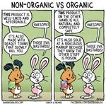 Non-organic vs organic