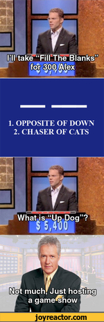 1. OPPOSITE OF DOWN 2. CHASER OF CATSNot much'Just a game^show